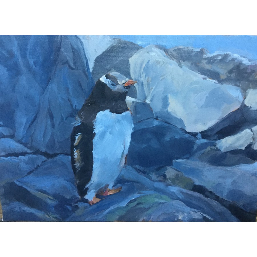 Pingouin Adélie